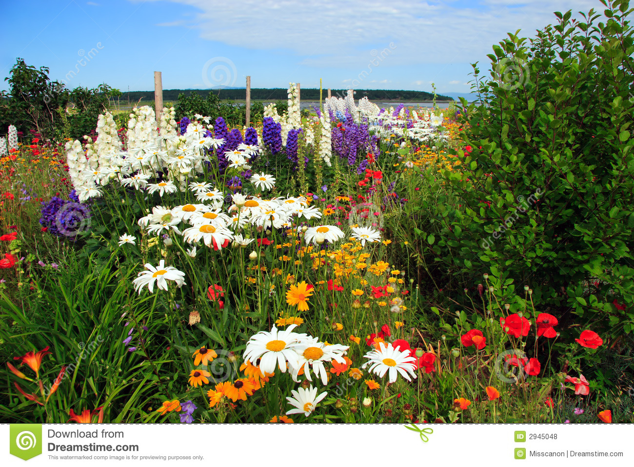 Amazing flower garden royalty free stock photos image for Amazing flower gardens