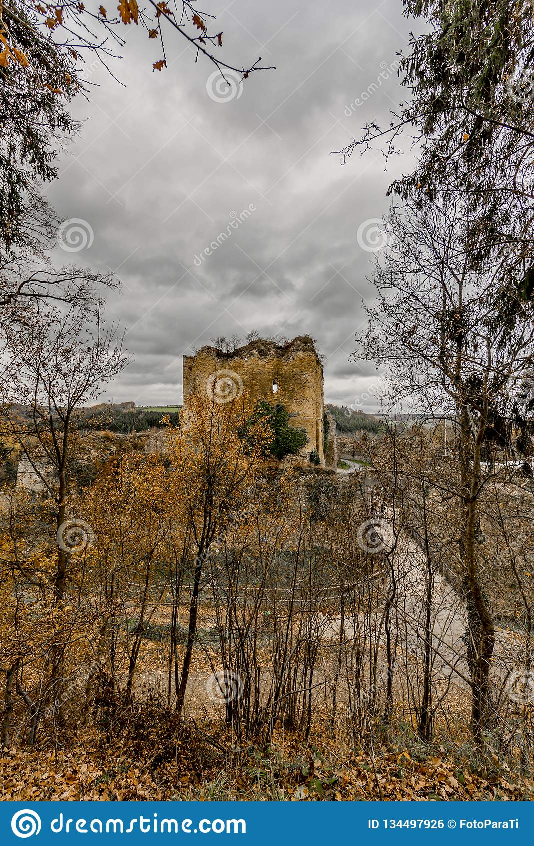 Amazing image of the castle Franchimont in ruins view from the forest