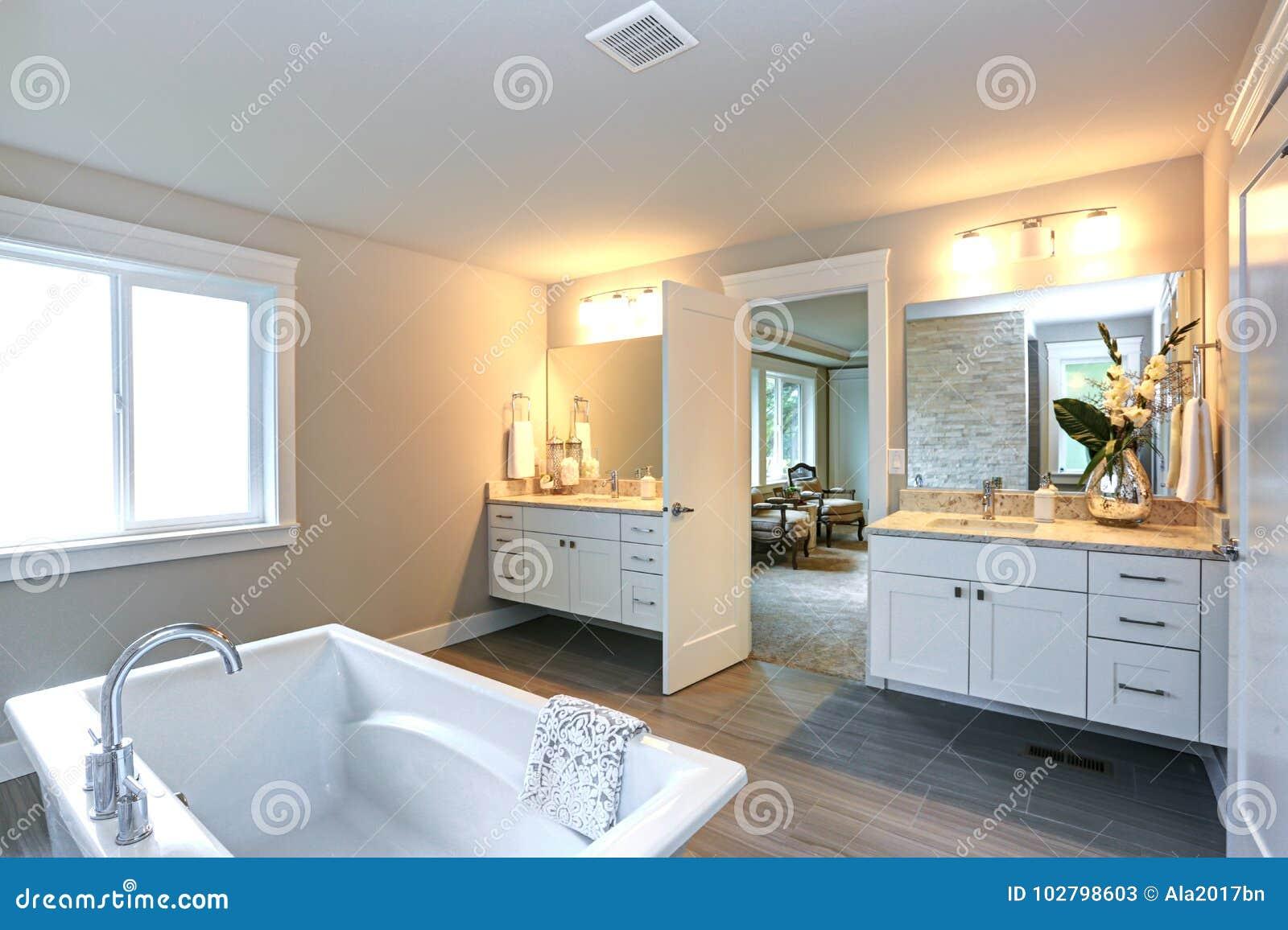 Amazing Master Bathroom With Two Bathroom Vanities Stock Image Image Of Mirror Luxury 102798603