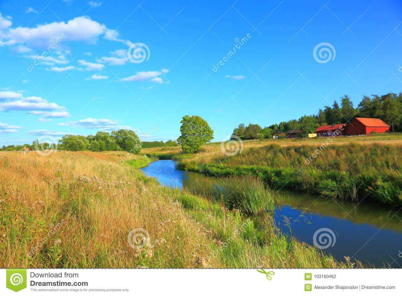 nature landscape with a view of small river