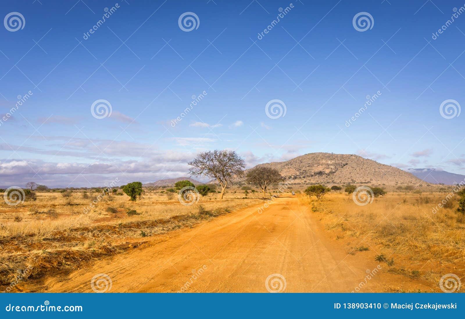 Safari road in Kenya