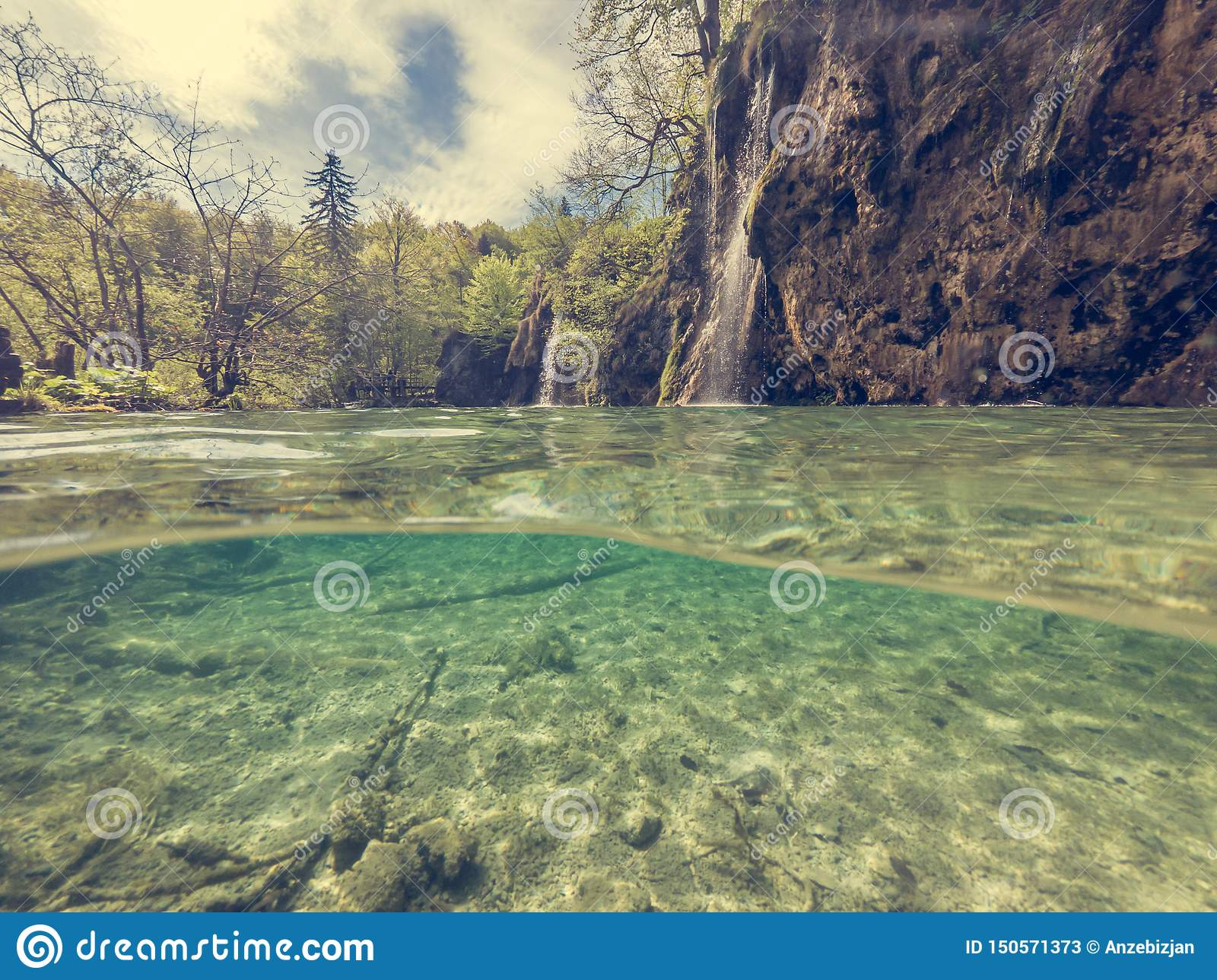 Amazing Split View Of Lake With Sunken Tree Trunk And