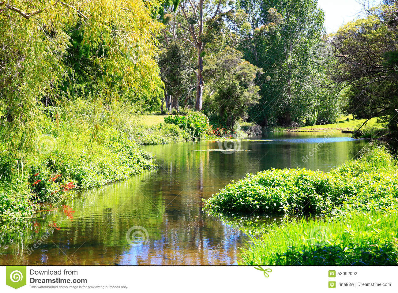 Amazing Sunny Scenery With Water And Greenery Stock Photo