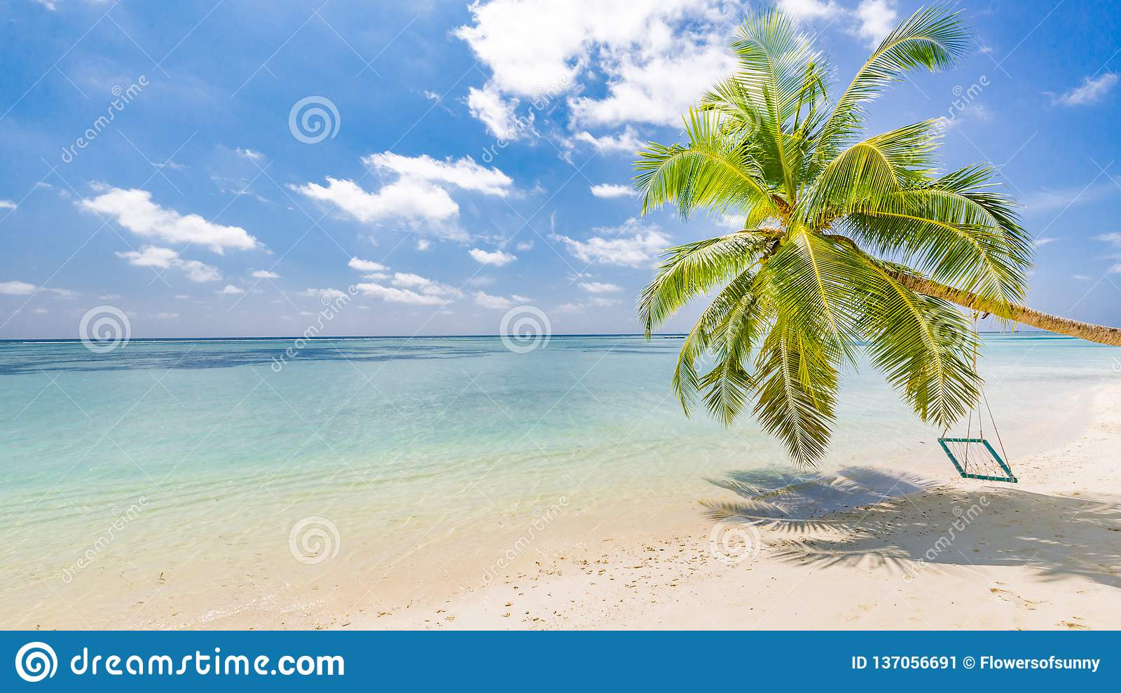 Amazing tropical beach banner. Palm tree with swing, summer day, tropical landscape. Vacation and holiday beach concept