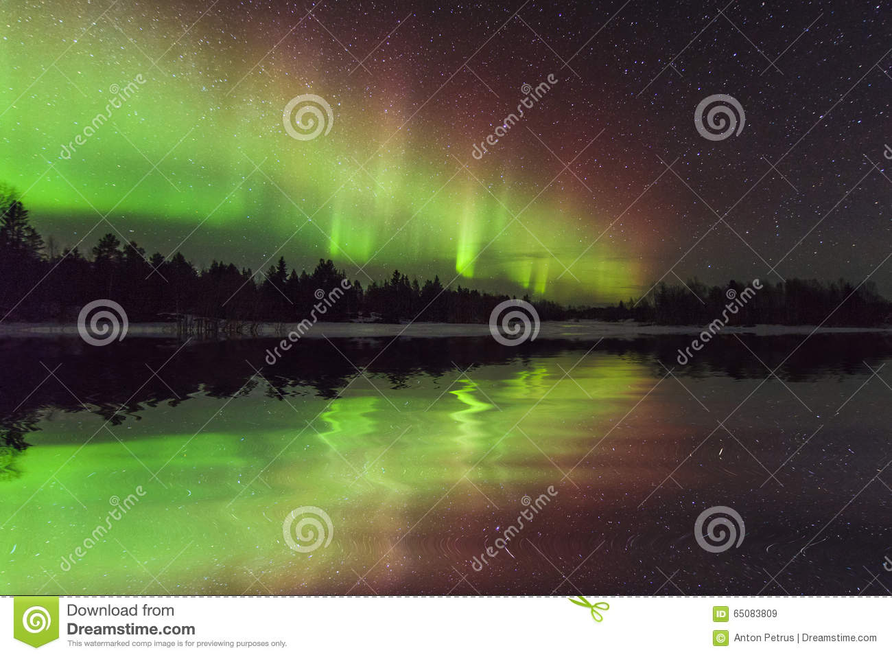 Amazing winter landscape with northern lights