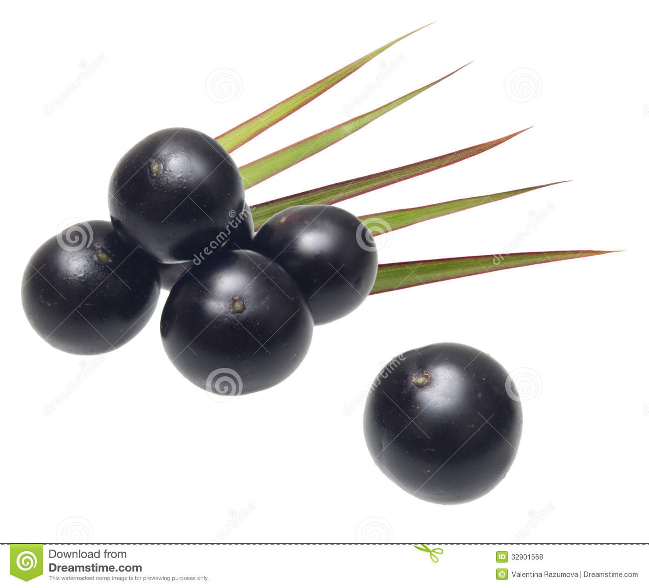 Acai berries amazon