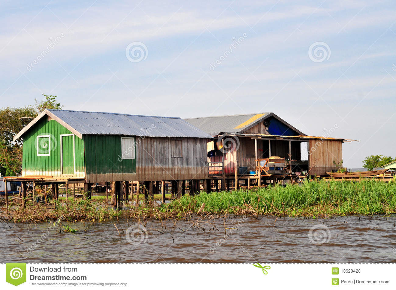 Amazon Jungle Typical Home