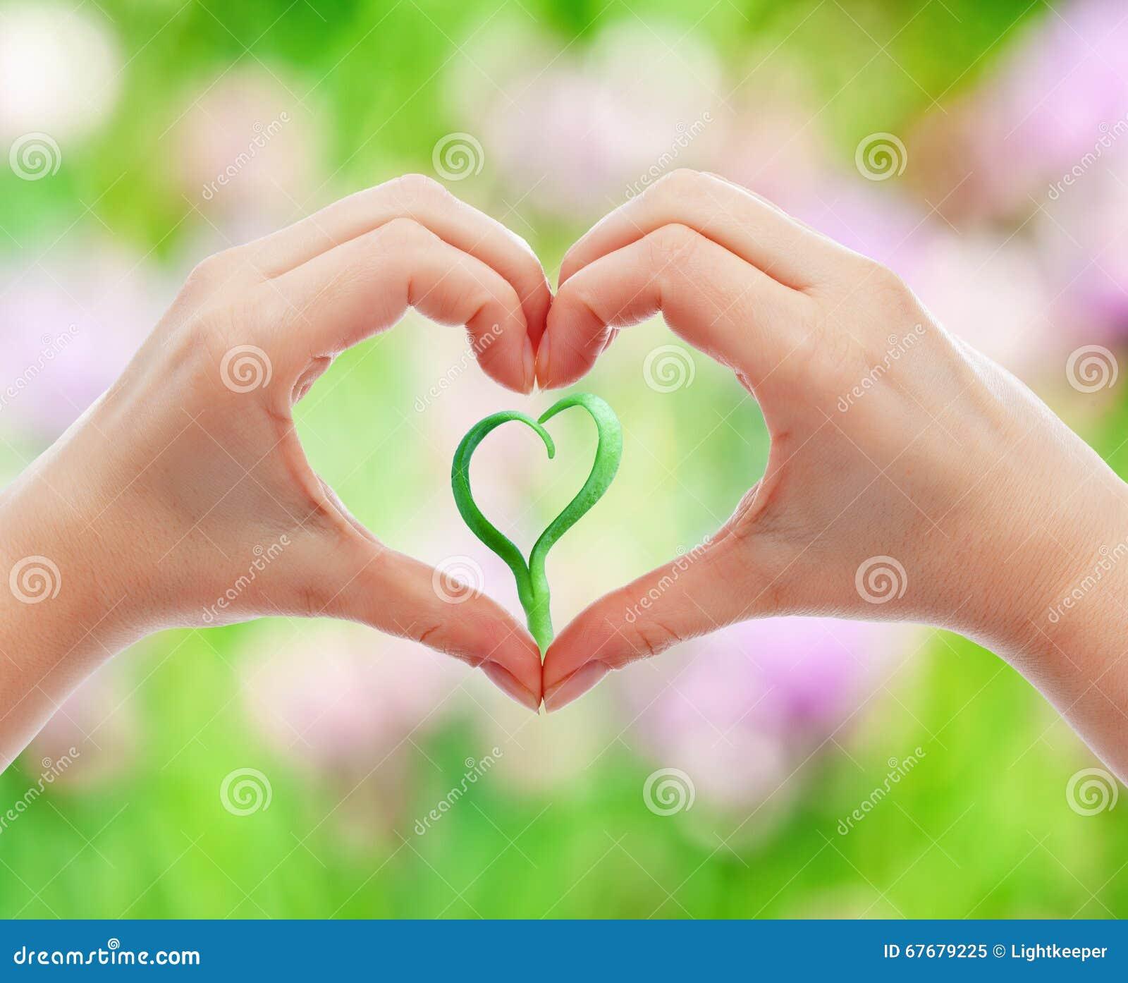 Ame e proteja a natureza e a vida