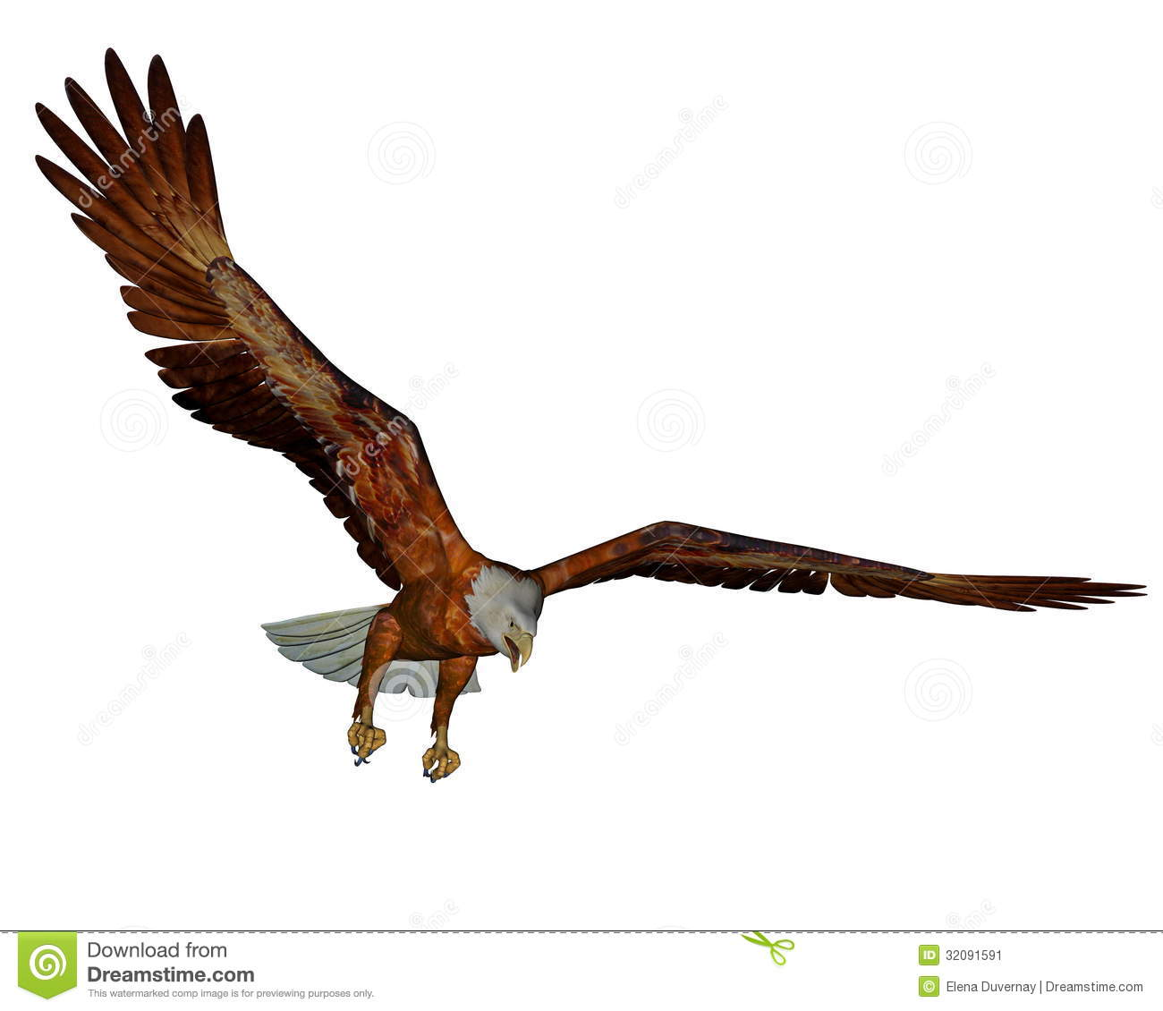 bald eagle render by - photo #11