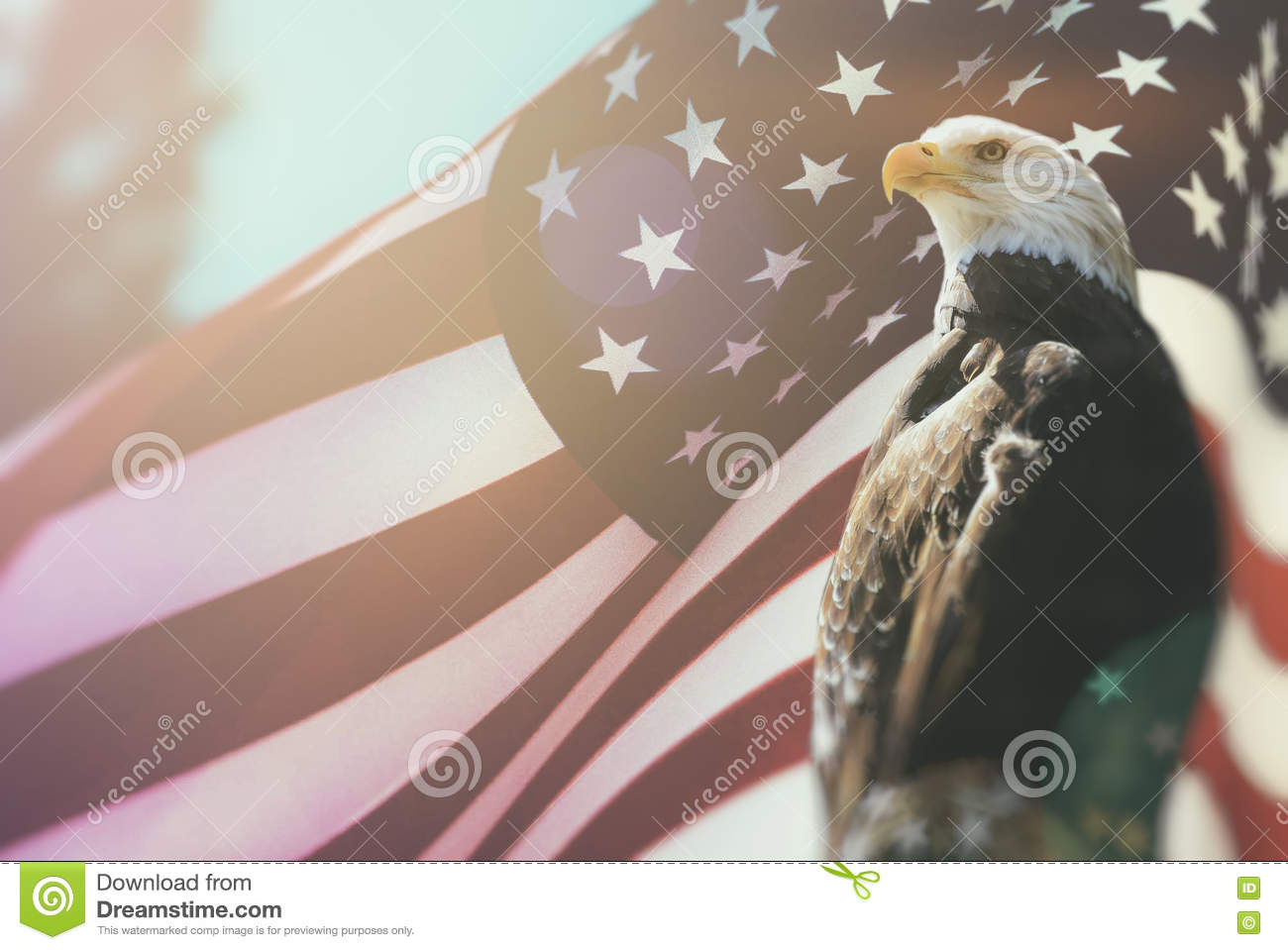 patriotism and the union of americans We the people of the united states of america, in order to form a more perfect union  -preamble to the us constitution i believe in a country where every citizen, whether they are born americans or just took the oath of citizenship, is heir t.
