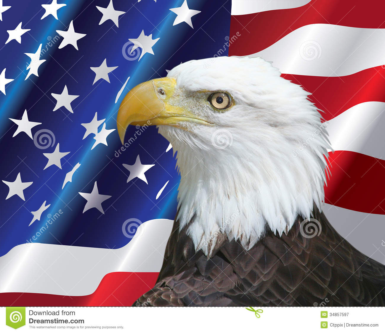 American Bald Eagle Portrait With Usa Flag Background Stock Image