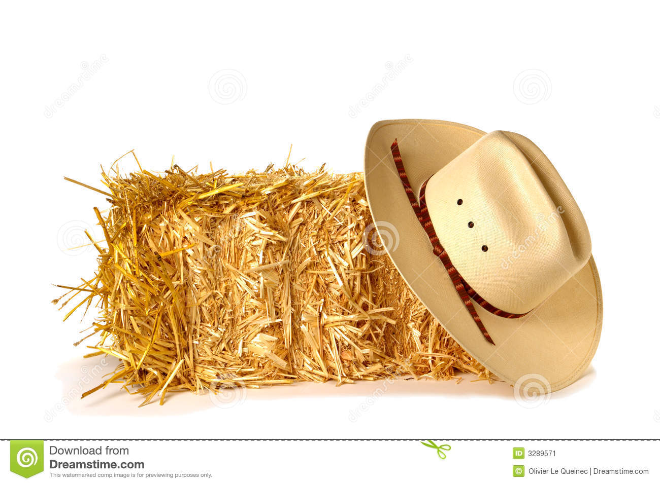 American bale cowboy hat rodeo straw west