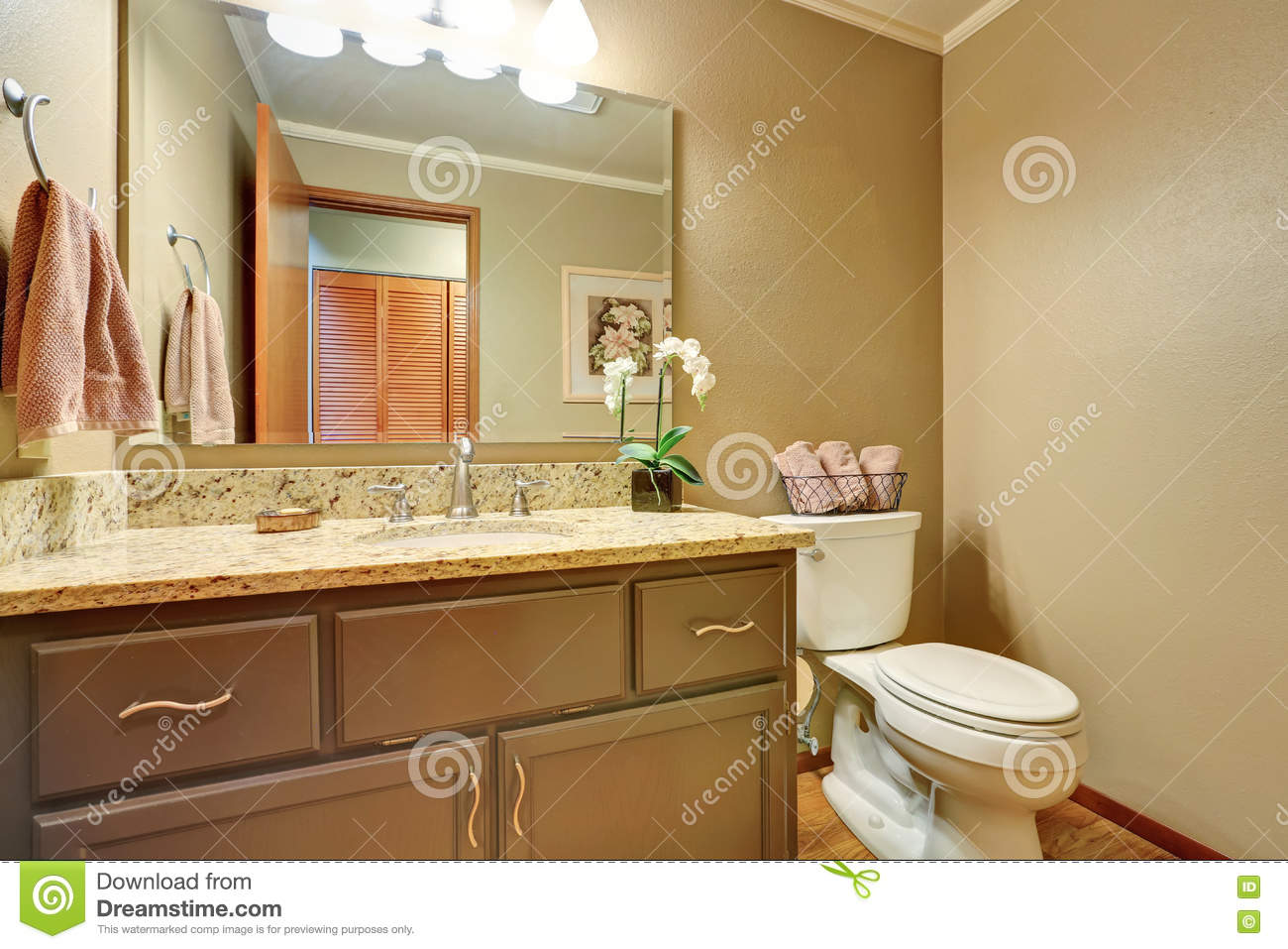 American classics bathroom vanities - American Classic Half Bathroom With Vanity Cabinet And A Toilet Stock Photo