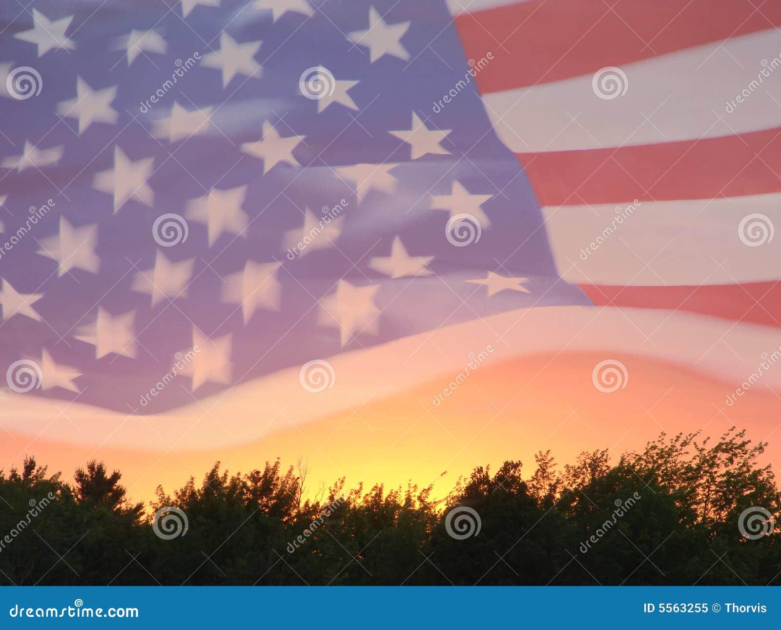 UNITED STATES CODE  US Flag