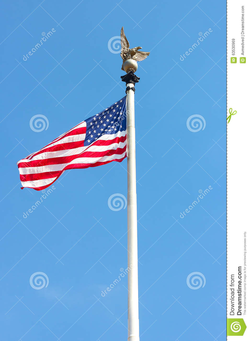 american flag with a metal eagle on its top in washington Waving American Flag Art Waving American Flag Art