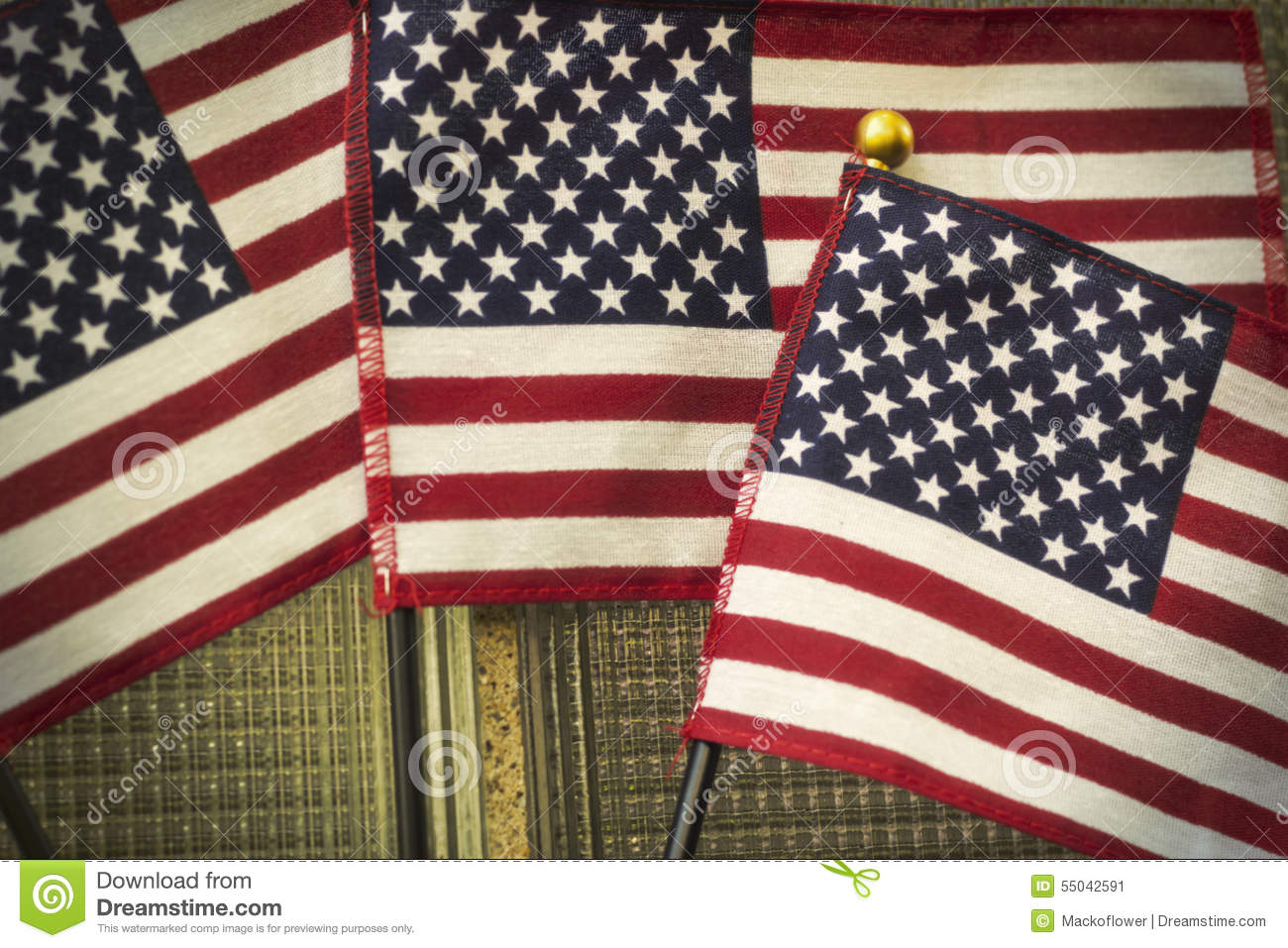united states and patriotism The notion that patriotism and racism are synonymous was used  cases against  83,000 muslims entering or living in the united states.