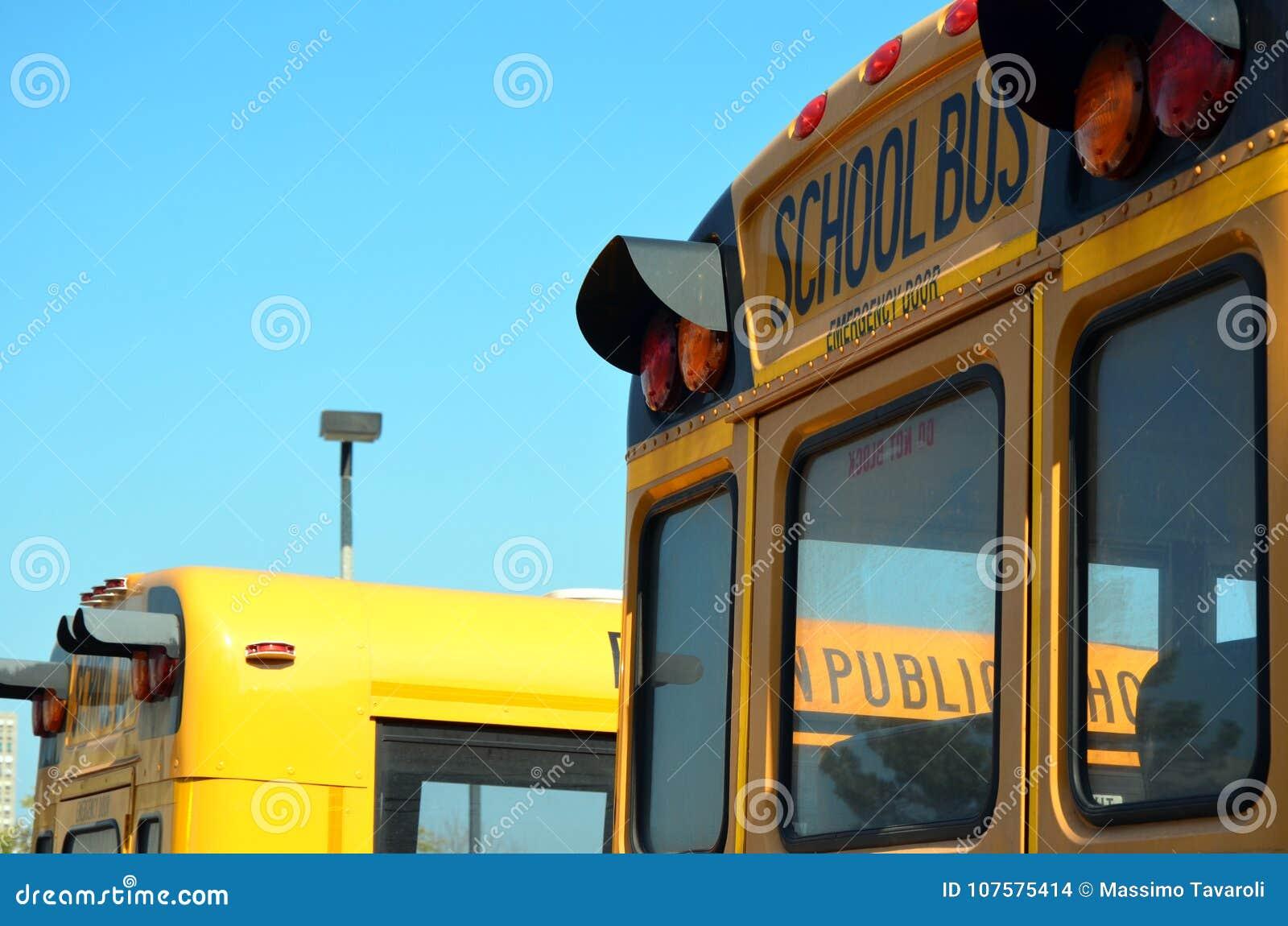 American school bus  stock photo  Image of american - 107575414