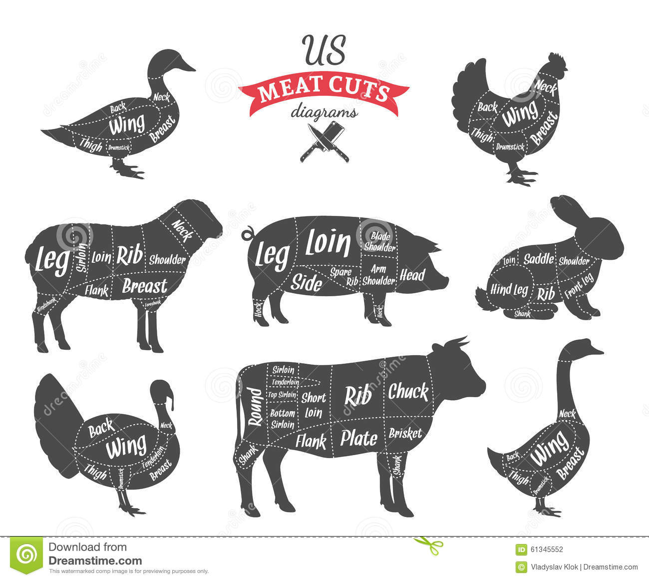 Stock Illustration American Us Meat Cuts Diagrams Beef Pork Lamb Rabbit Chicken Duck Goose Turkey Image61345552 on sheep meat chart