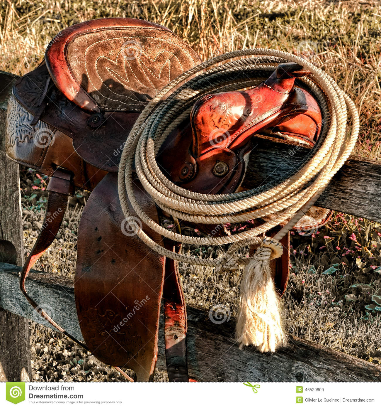 American West Legend Rodeo Western Lasso on Saddle