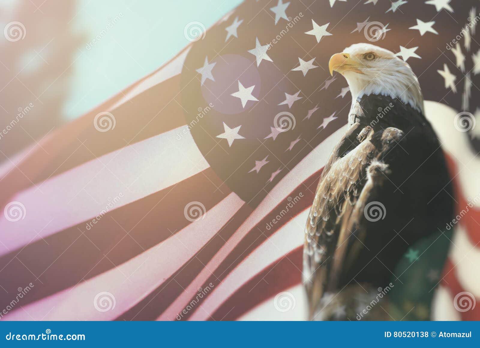 Americano Eagle Flag Patriotism calvo