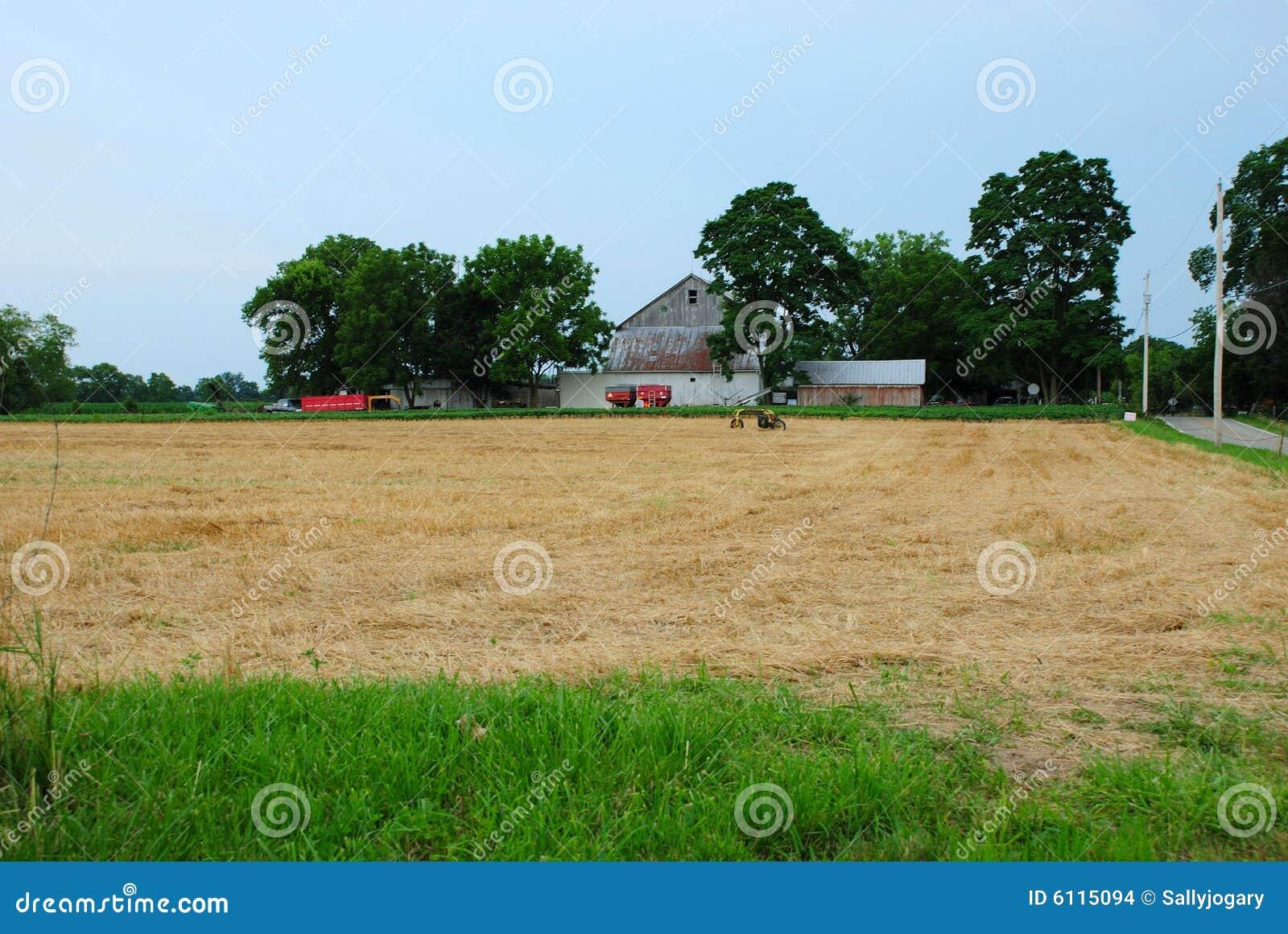 Amerika lantgård