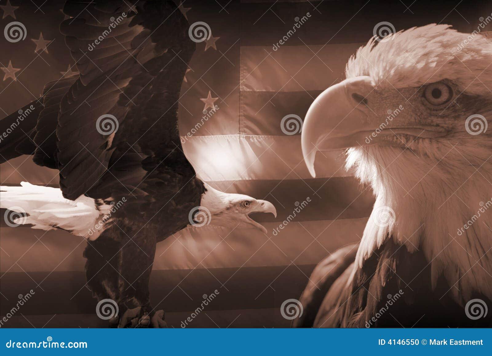 Amerikanische Flagge und Adler