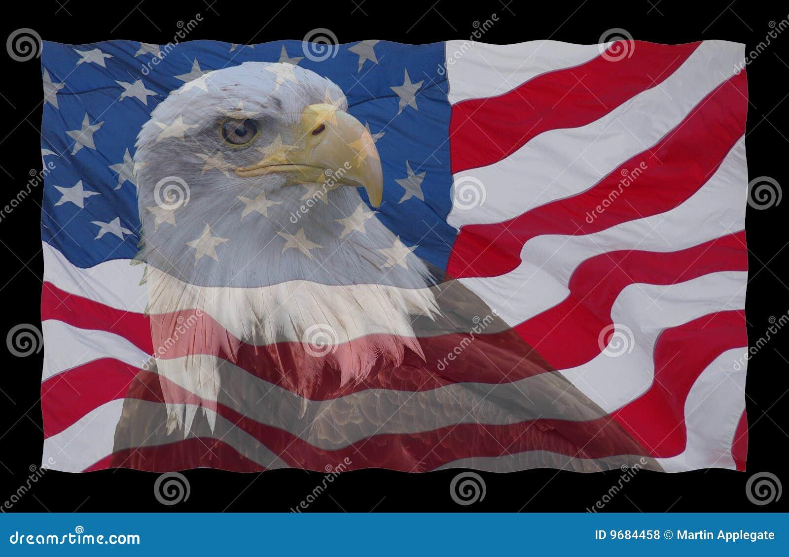 Amerikanische Flagge und kahler Adler