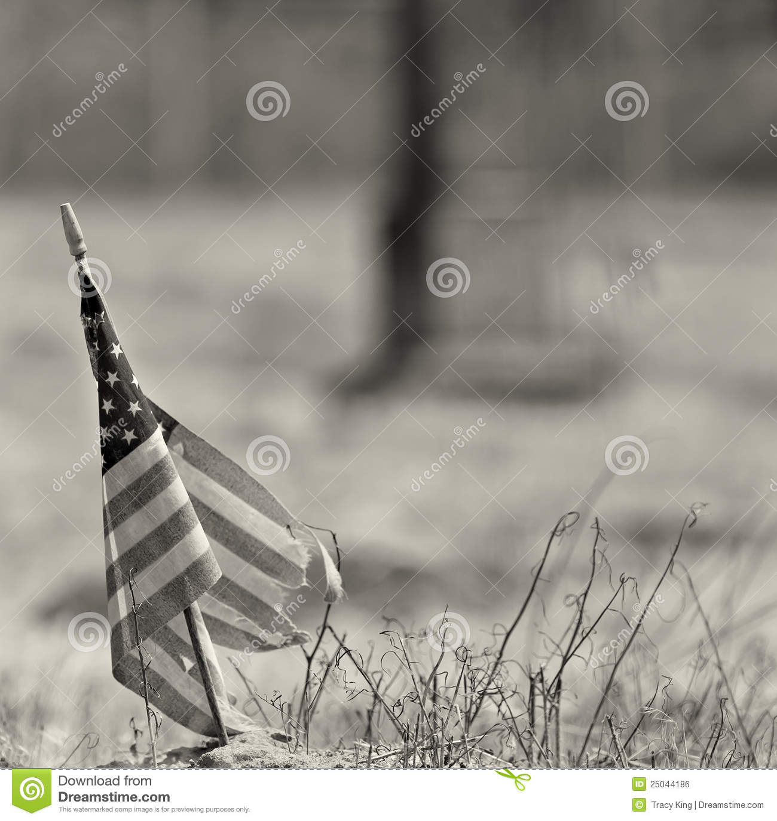 Amerikansk slitage fotowhite för svart flagga ut