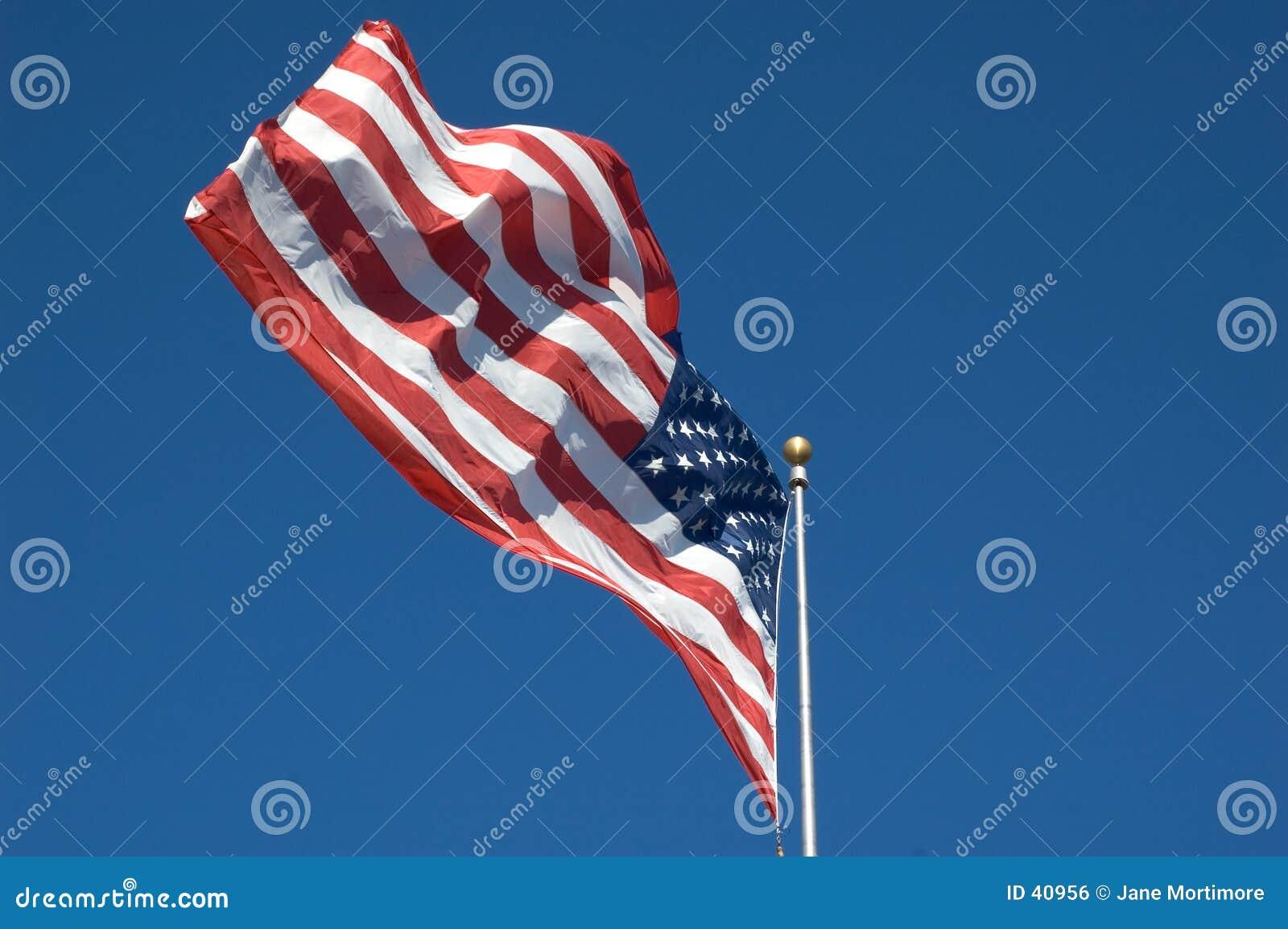 Amerikanska flaggan
