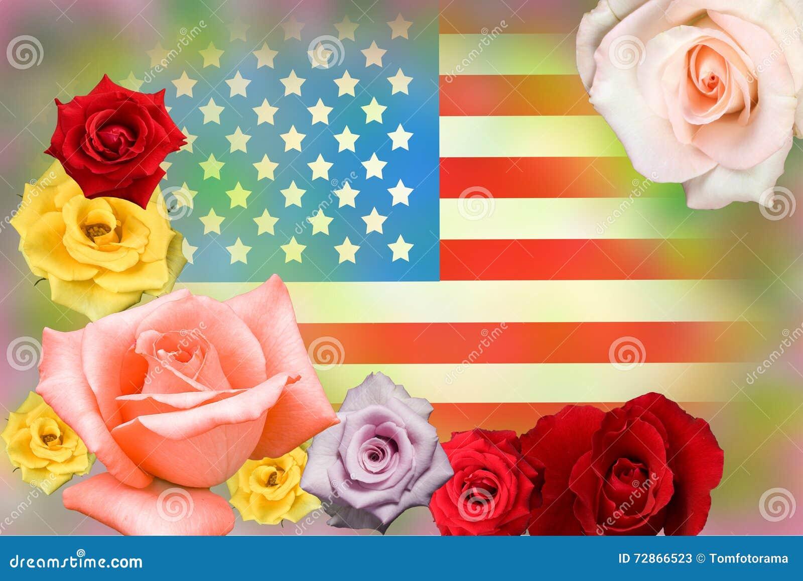 Amerikanska flaggan och steg