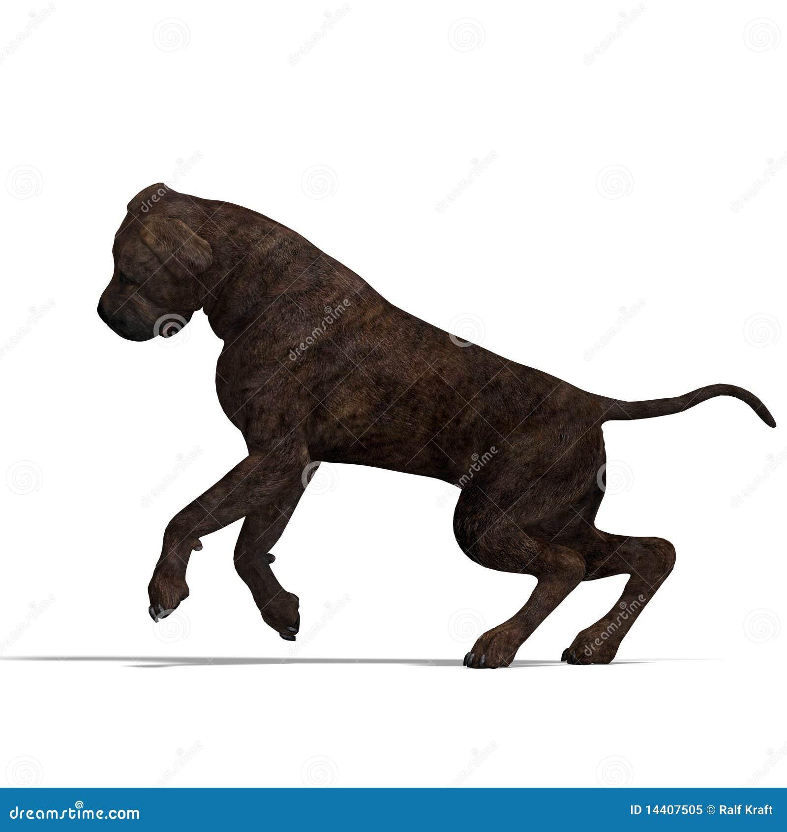 Amerikanskt för hundmastiff för clipping 3d framförande
