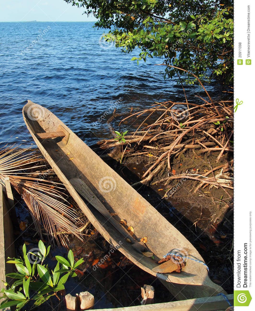 Amerindian Dugout Canoe Royalty Free Stock Photos - Image ...