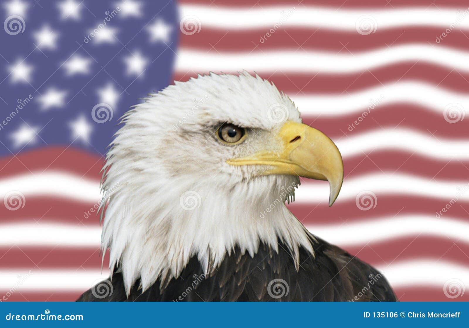 Amerykańscy symboli