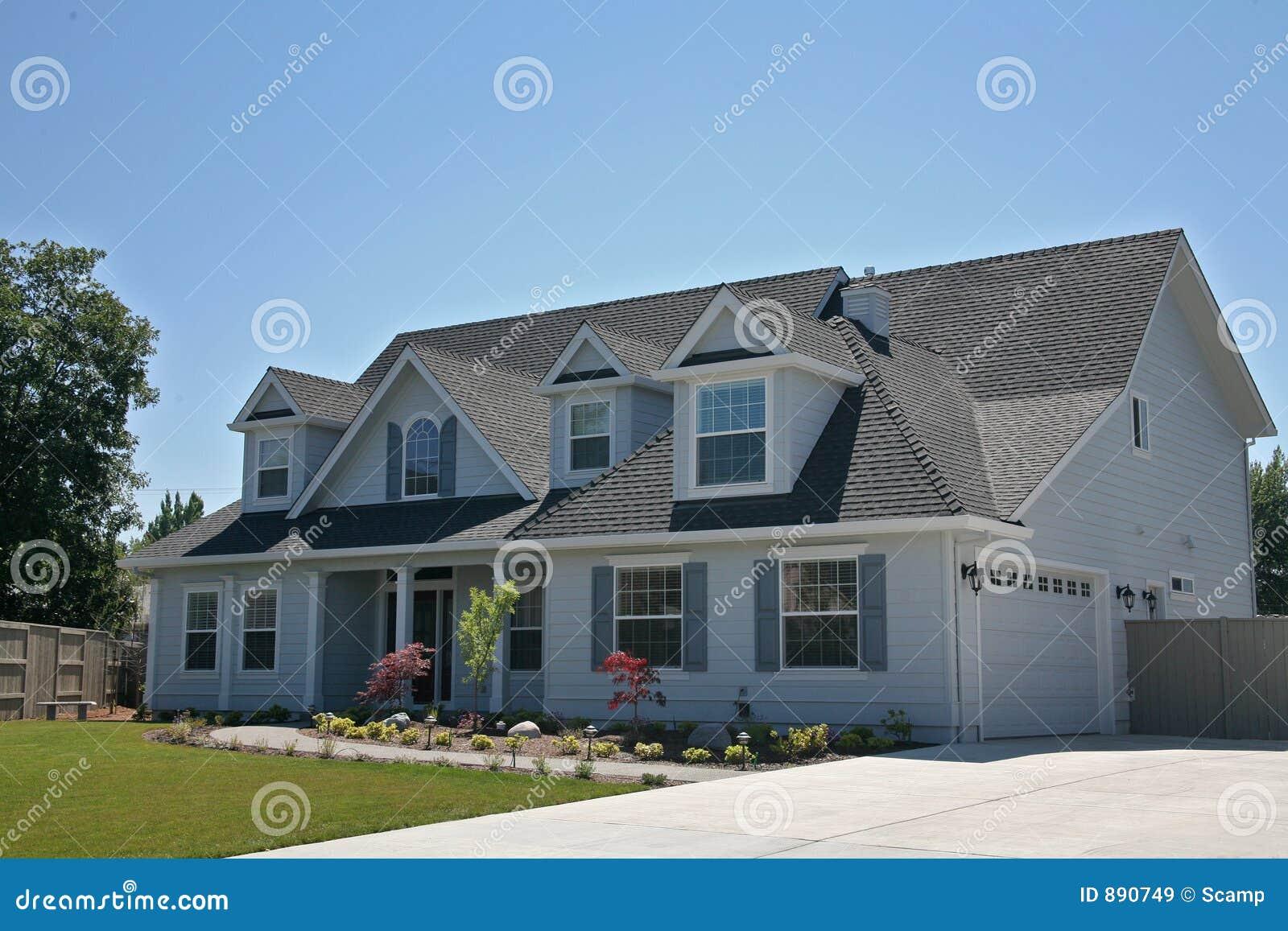 Amerykanie nowego domu
