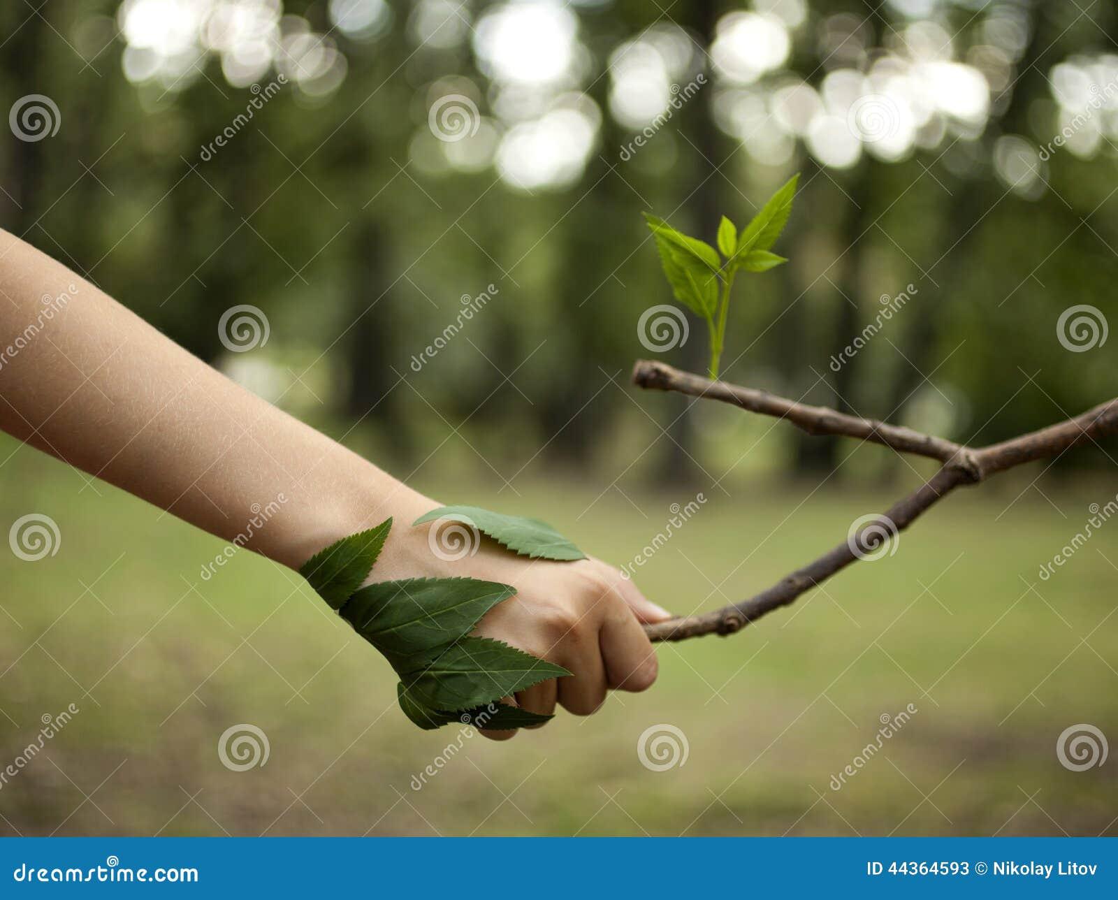 Ami la natura