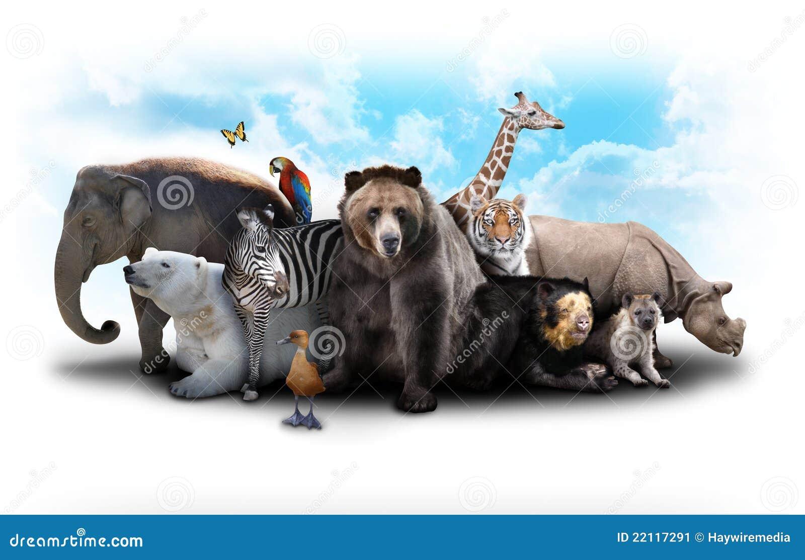 Amici dell animale del giardino zoologico