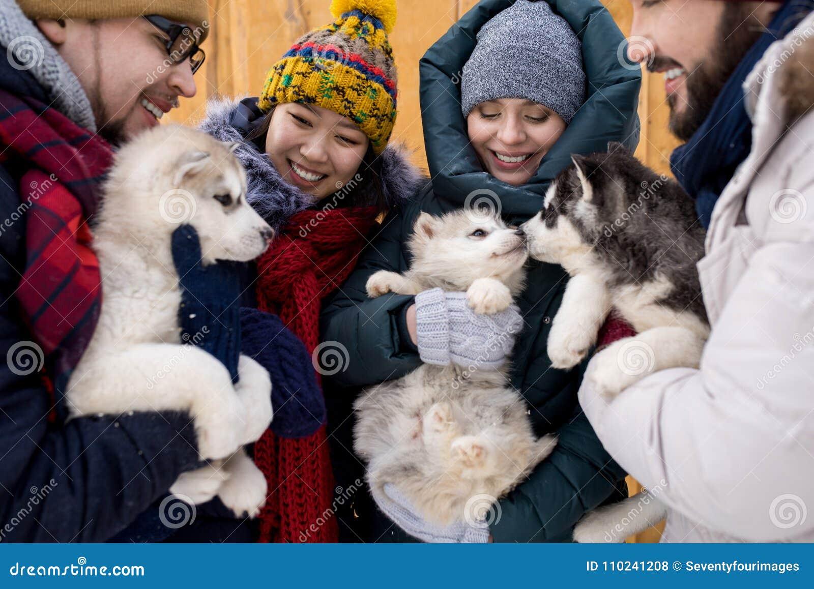 Amigos que juegan con los perritos lindos