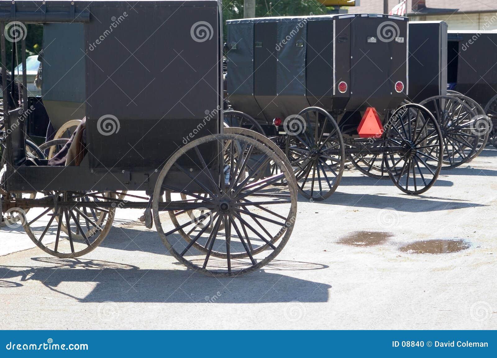 Amische Buggys