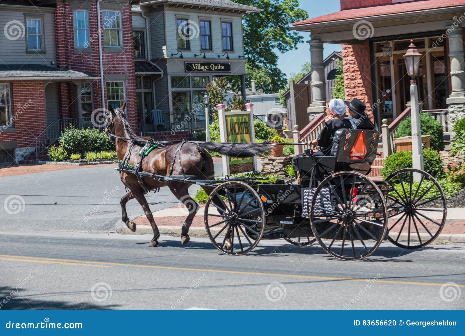 Amischer Buggy benutzt für Transport