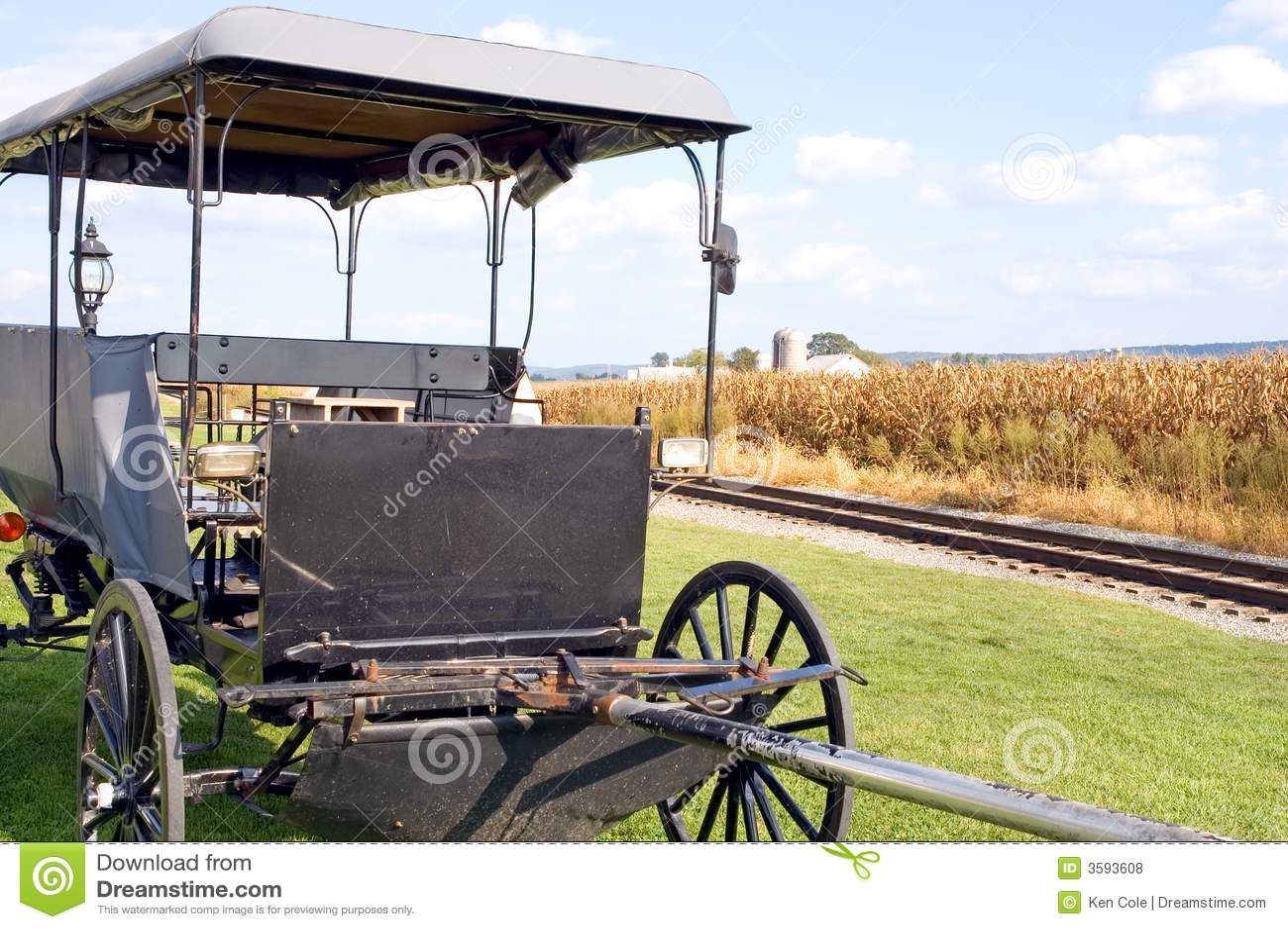 Amish με λάθη συρμένο άλογο