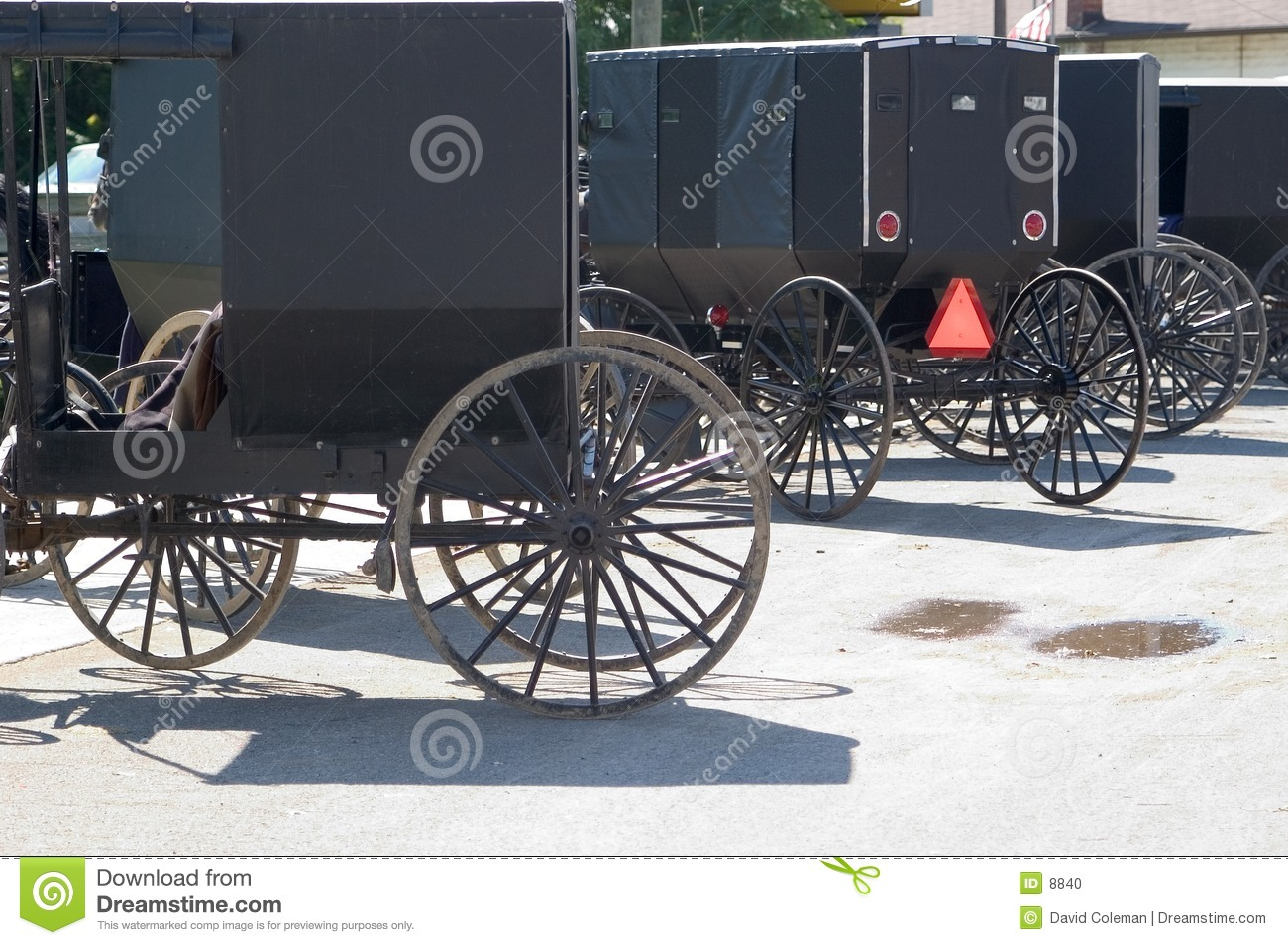 Amish buggies