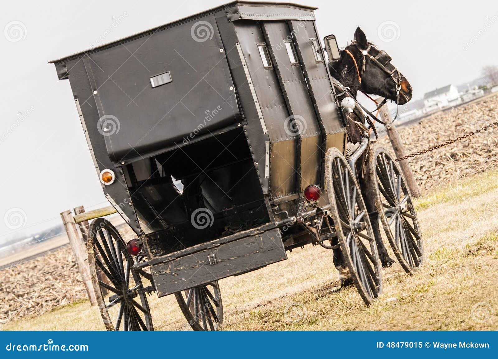 Amish, caixão, carrinho
