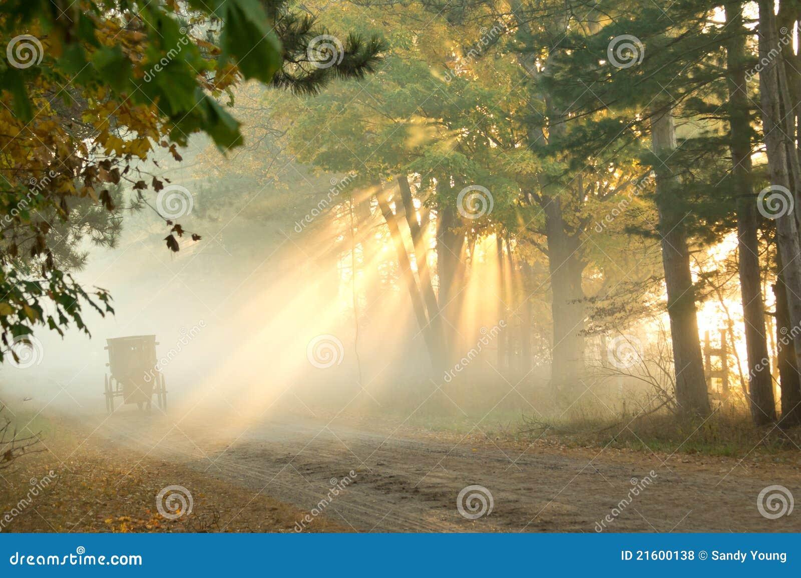 Amish en niebla de la mañana
