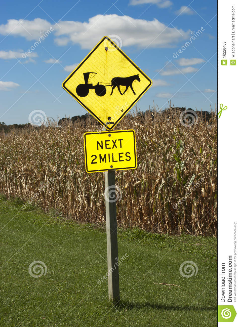 Amish Farm Horse Drawn Buggy Road Sign