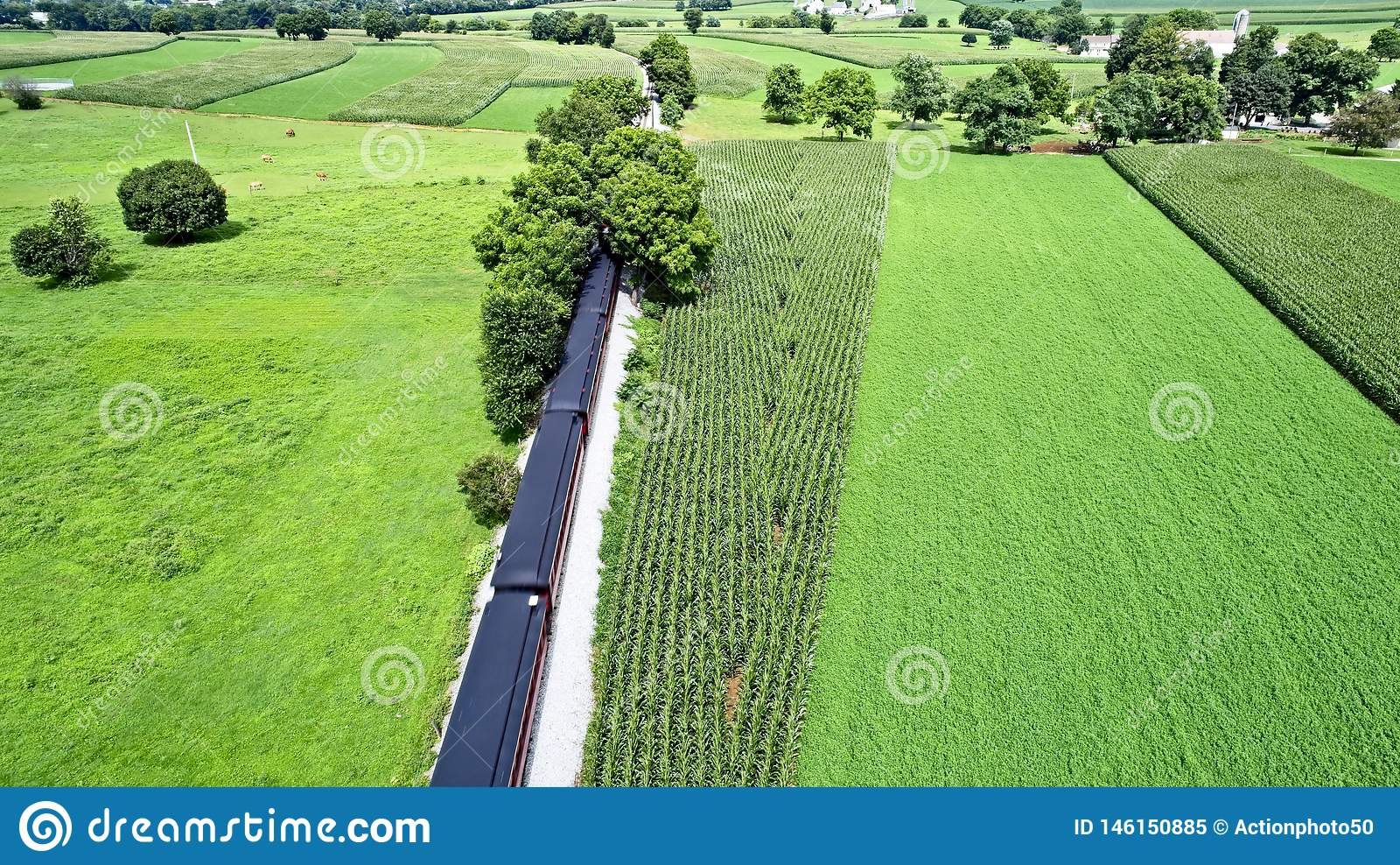 Amish farmlands by Rail Road Tracks