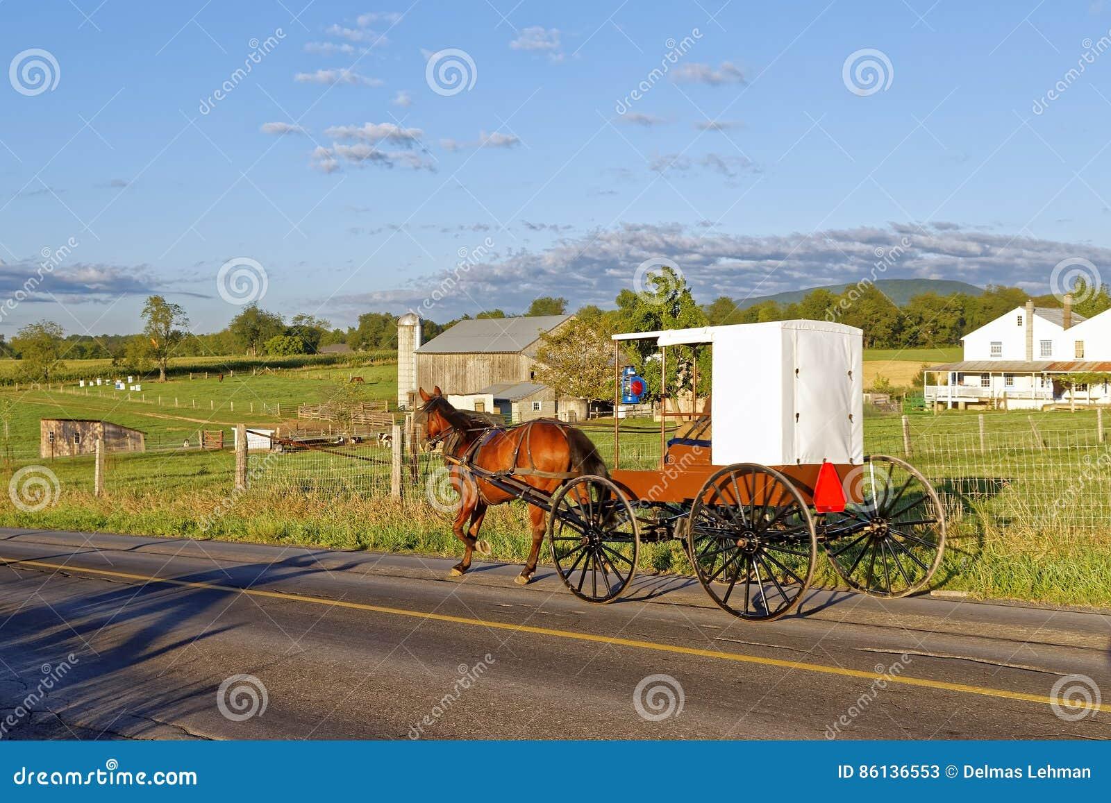 Amish fracht i koń Podróżujemy na Wiejskiej drodze