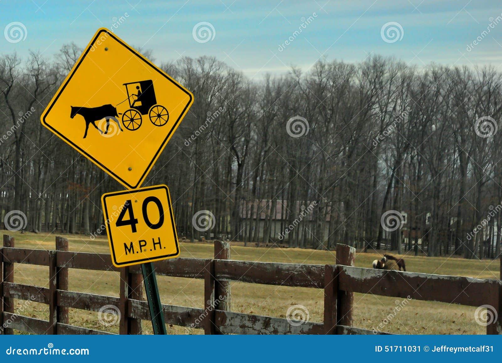 Amish häst- och barnvagnvägmärke i förgrund med hästar som betar i bakgrunden