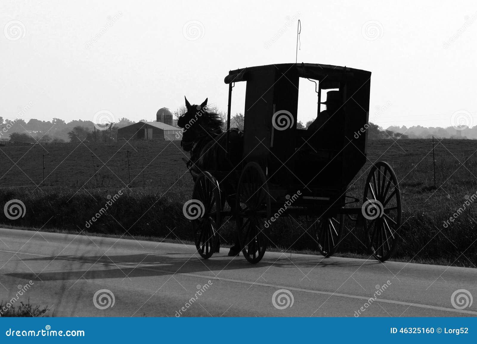 Amish koń i powozik