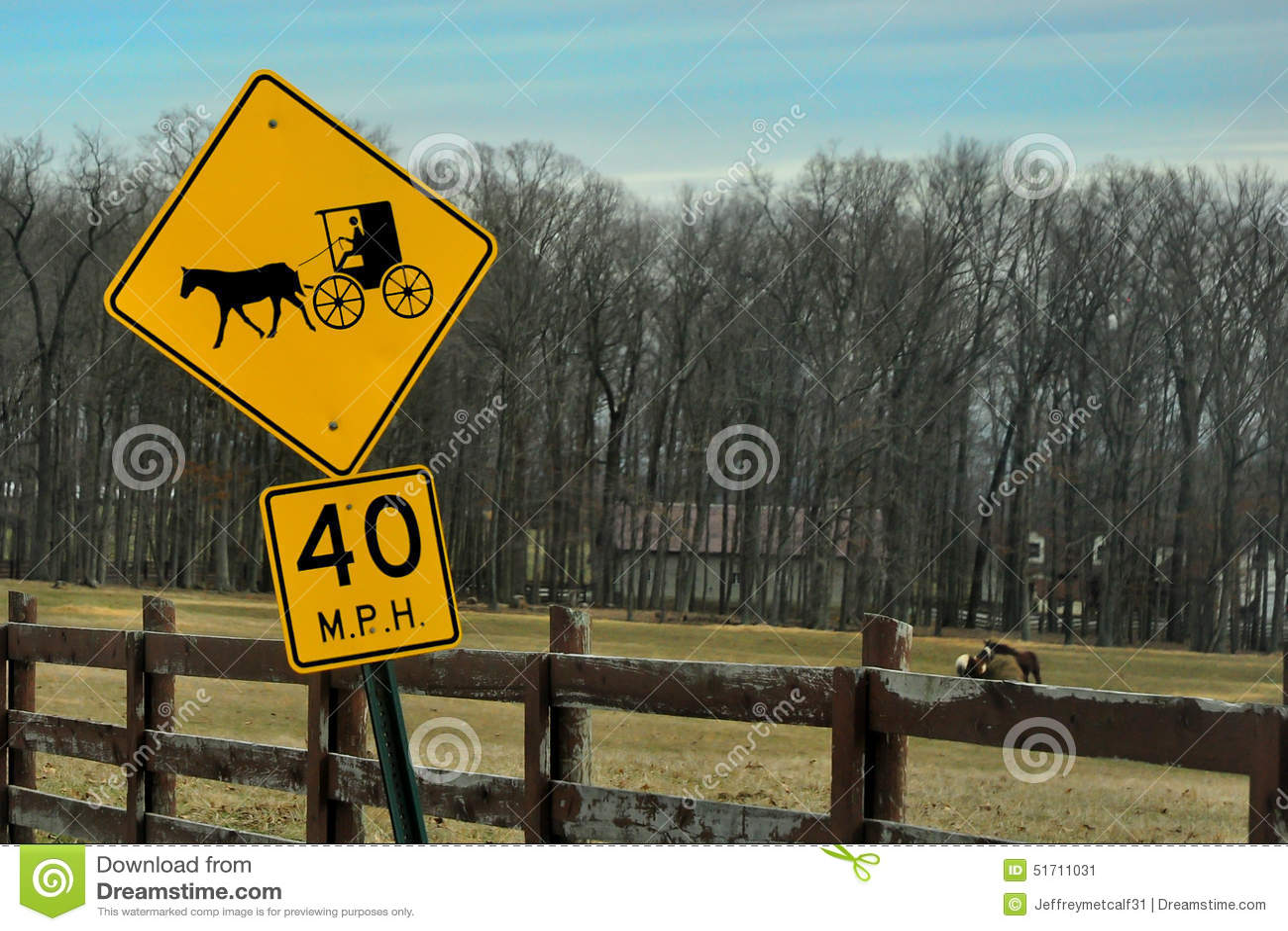 Amish koń i Zapluskwiony drogowy podpisujemy wewnątrz przedpole z koniami pasa w tle