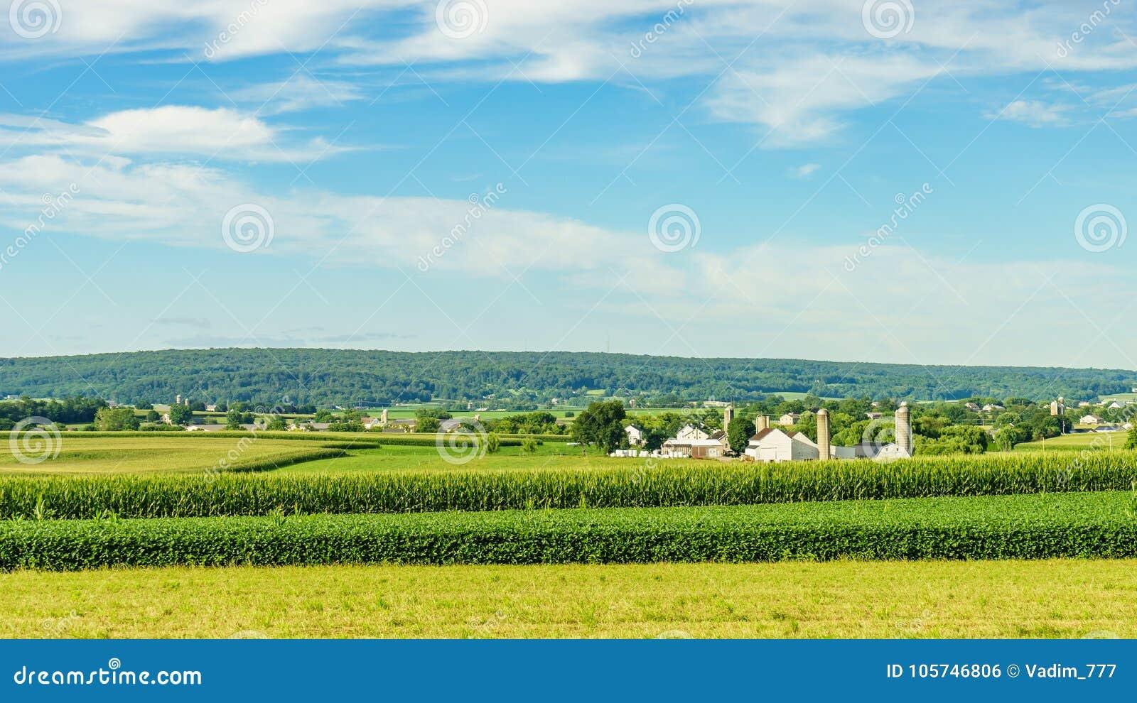 Amish kraju gospodarstwa rolnego stajni pola rolnictwo w Lancaster, PA